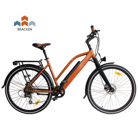 Juicy Roller e-bike - Braken